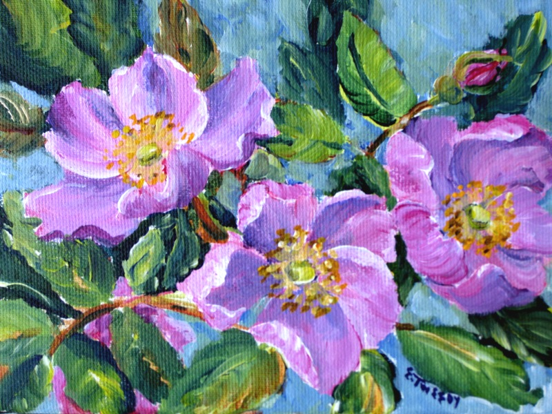 Elaine Tweedy - Alberta Wild Rose I (SOLD)