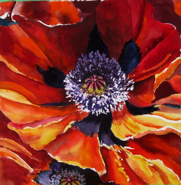 Elaine Tweedy - Oriental Poppy (SOLD)