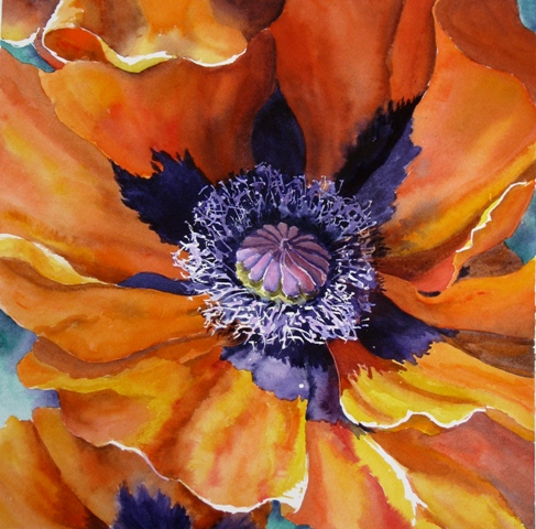 Elaine Tweedy - 'Prince of Orange' (Poppy)