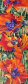 Elaine Tweedy - Vibrant Poppies  (SOLD)