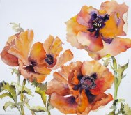 Elaine Tweedy - Springtime Poppies (SOLD)