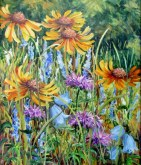 Elaine Tweedy - Waterton Wildflowers