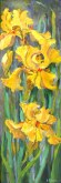 Elaine Tweedy - Three Yelow Iris